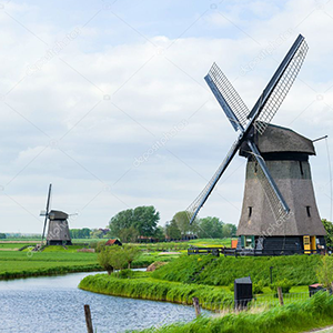 Dutch Complete Language Course (Beginner to Advanced) Image